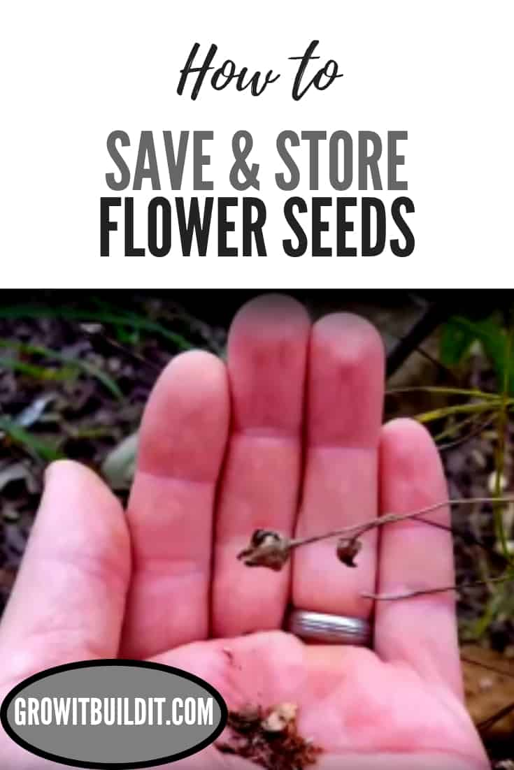 save & store flower seeds