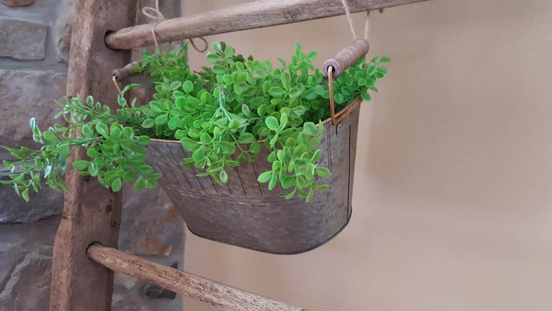 Farmhouse Galvanized Metal Bucket with Greenery