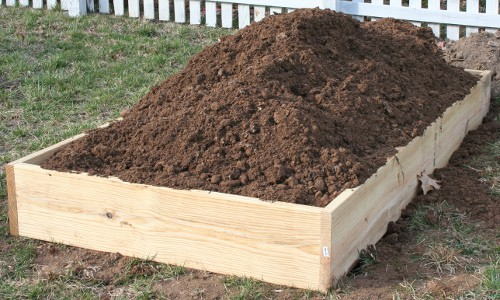 Why Not To Build A Raised Bed Garden