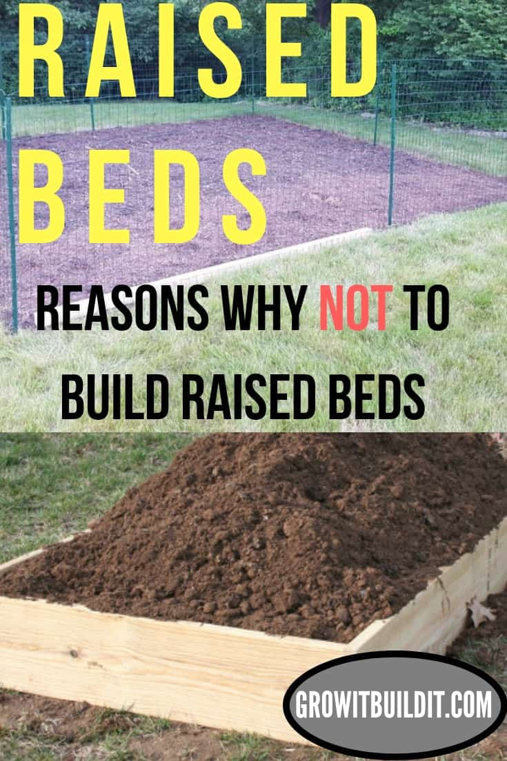 Raised Beds - Reasons Why NOT to Build Raised Beds