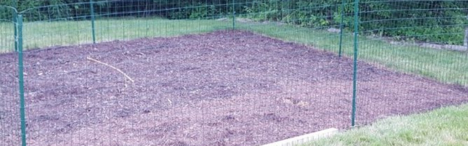 easiest way to remove sod by hand