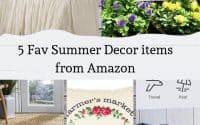 5 Fav Summer Decor Items From Amazon