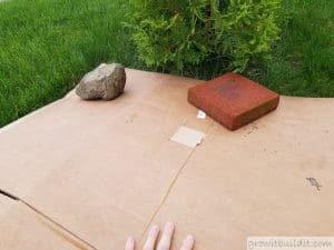 use cardboard to kill grass