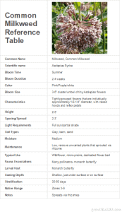 common milkweed reference table