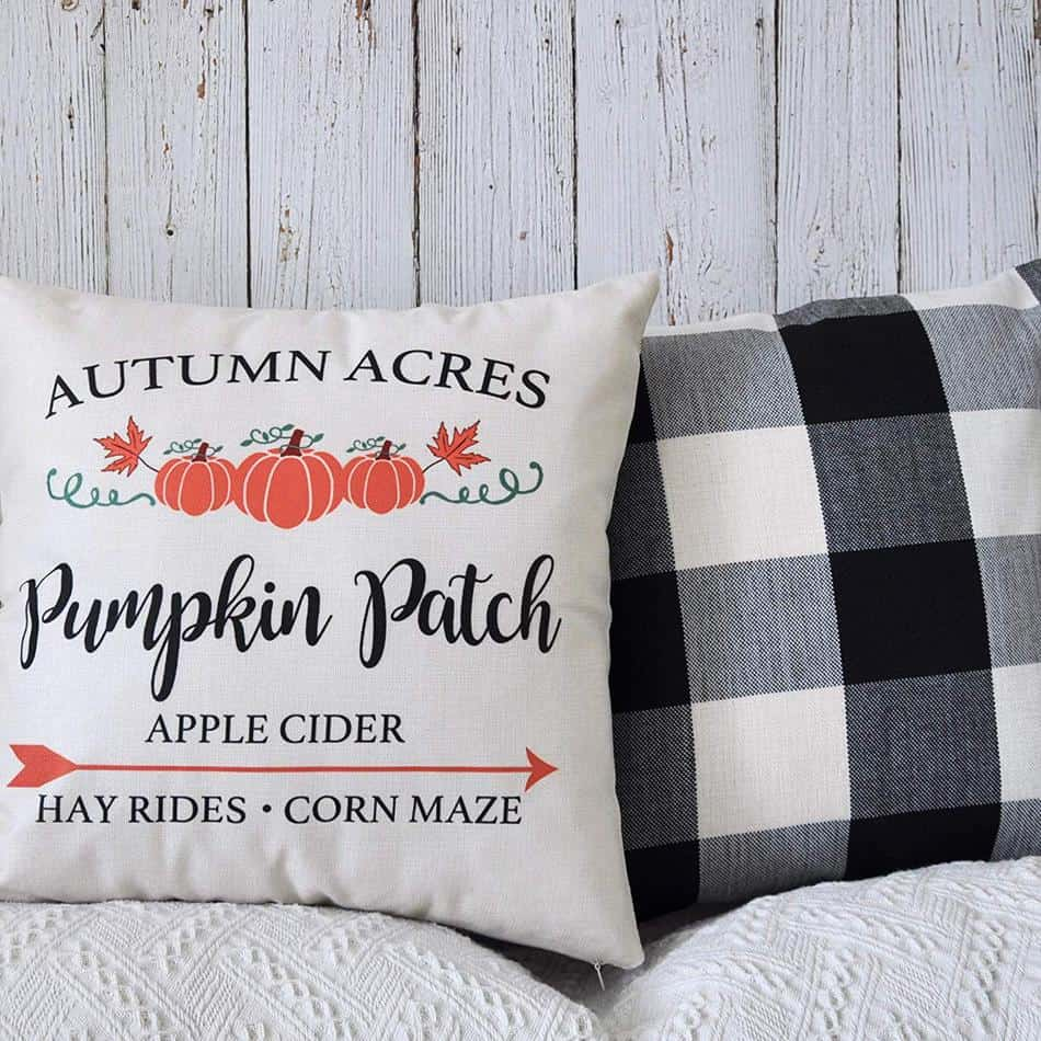Set of 2 Fall Farmhouse Decorative Throw Pillows Covers for Fall Decor