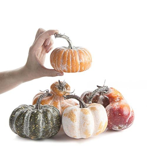 set of 6 frosted gourds amazon
