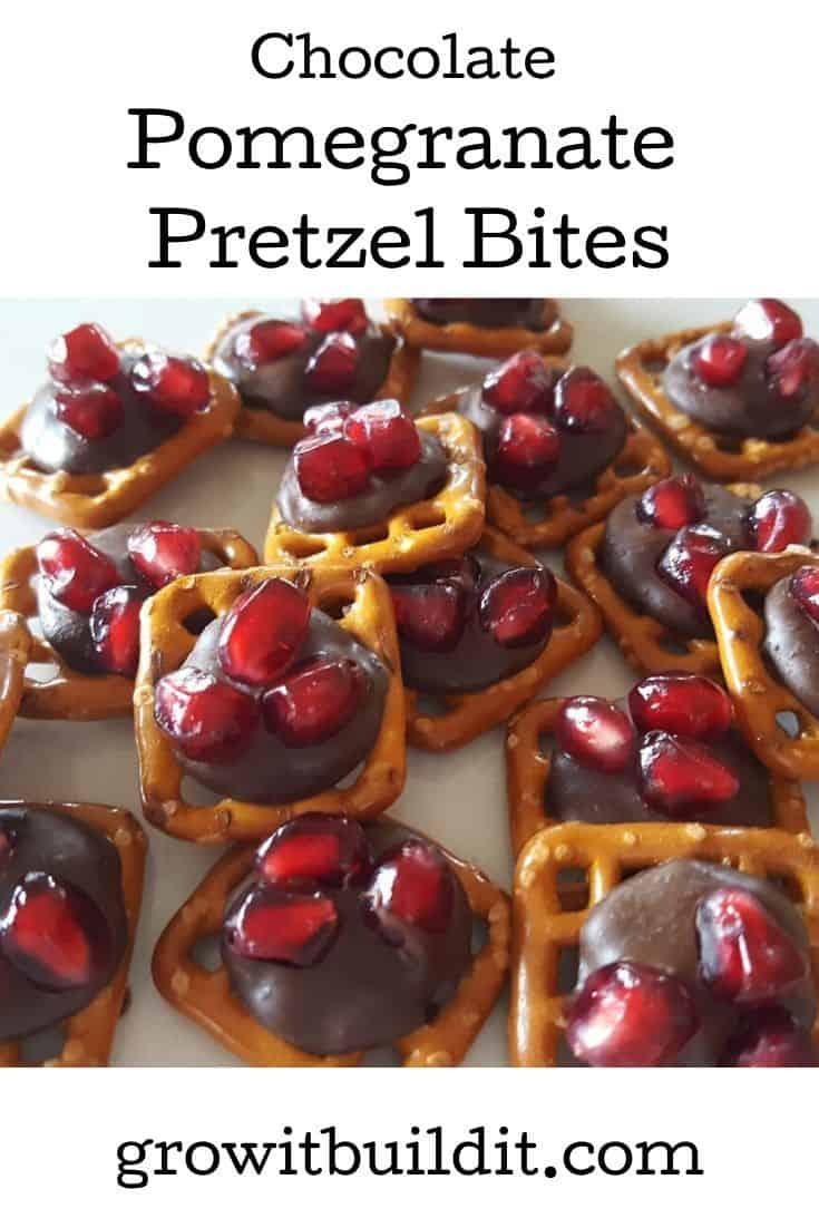 Chocolate Pomegranate Pretzel Bites