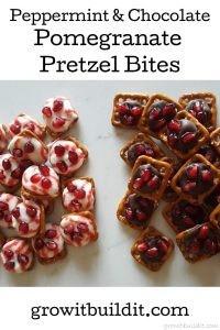 Peppermint and Chocolate Pomegranate Pretzel Bites
