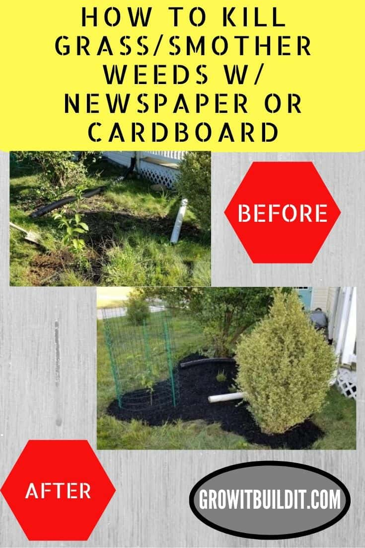 how to kill smother grass and weeds with newspaper or cardboard
