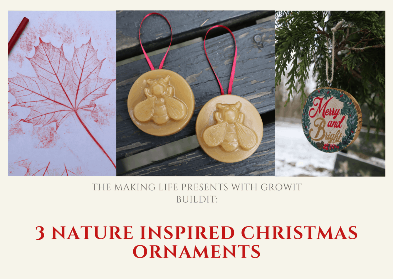nature inspired Christmas ornaments DIY