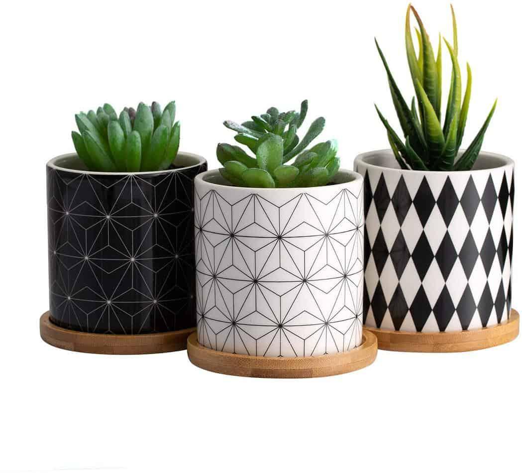 Succulent Plant Pots set of 3 3.5 in