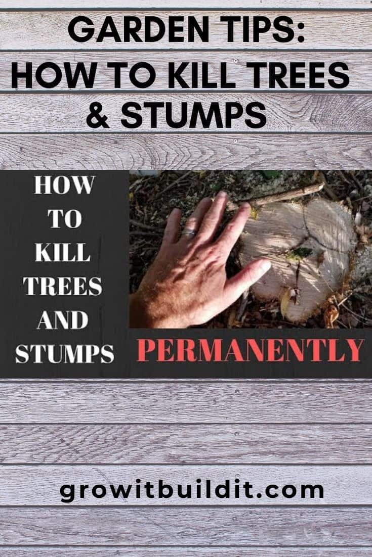 how to kill trees and stumps
